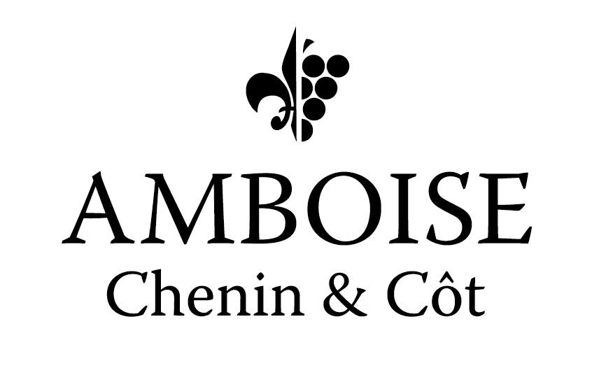 logo amboise